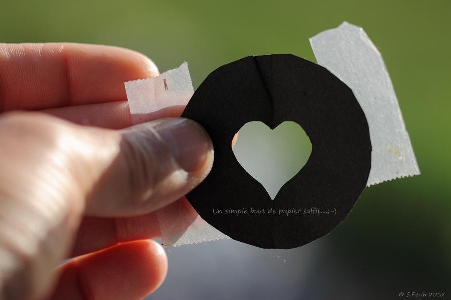 La déclaration d'amour ... Img_5213-copier--34f75ce